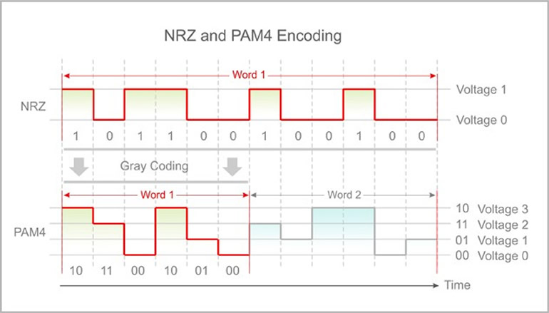 nrz and pam4 encoding