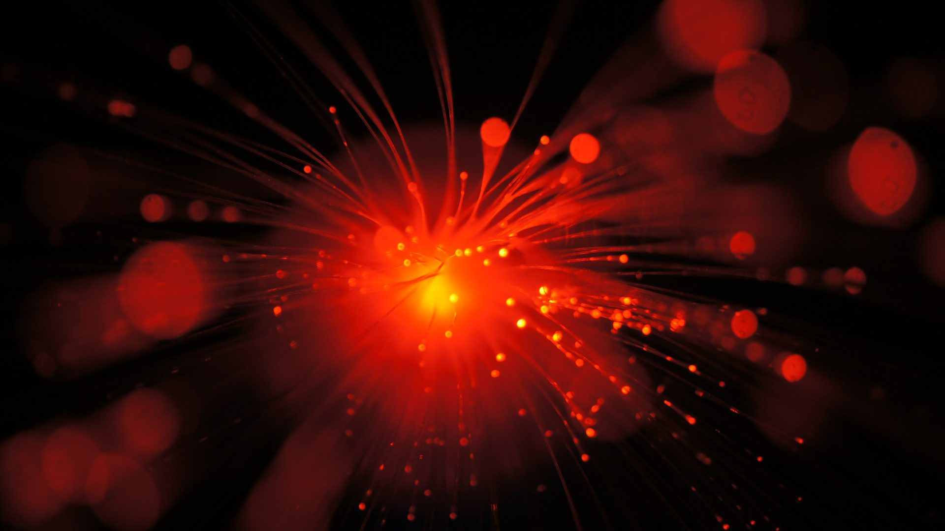technology brief covering coherent optics efficiency and capacity